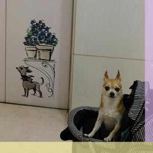カレッタ汐留46階ランチ&銀座~♪