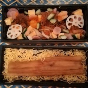 ミシュラン掲載☆穴子、日テレ、築地で寿司&穴子again