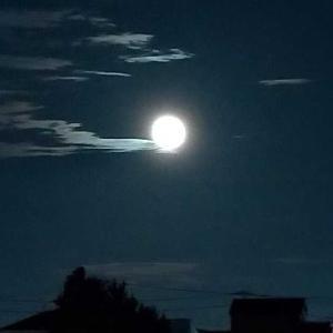 神無月の満月〜やんちゃ小僧とわたし〜