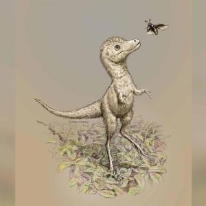 【画像】生まれたばかりのティラノサウルス、中型犬ほどの大きさでフサフサで可愛いと話題に