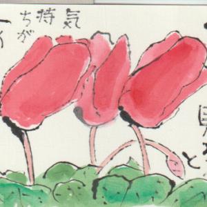 絵手紙の書き方例・シクラメン(21画像)