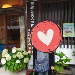 [群馬県]日本三美人の湯「川中温泉 かど半旅館」の紹介!泉質は良い?アクセスや日帰り温泉は?