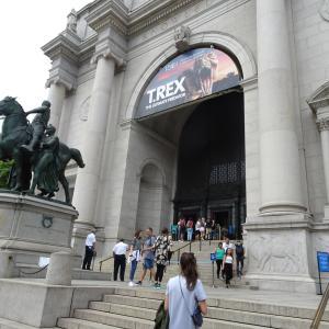 【女一人旅✈~NY~】5日目:アメリカ自然史博物館