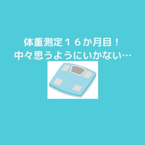 糖質制限&プロテインダイエット16か月目!
