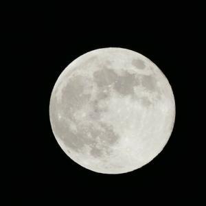 """[香港]中秋節・丸いお月様の象徴するところは""""円満""""。今年は国慶節と重なり悲しいことも。"""