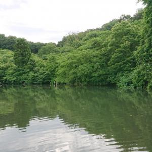 満足の釣り逃げ