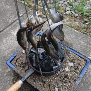 久々 fishing to eat