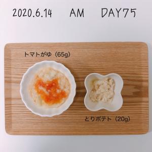離乳食 12週目(生後33-34週目)