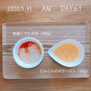 離乳食 10週目(生後31-32週目)