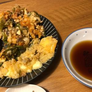 【酒に合うメシ!】エビ、小松菜、エリンギのかき揚げ!&チーズ揚げ