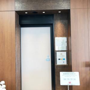 《岡山》JAL搭乗記 OKJ→HND