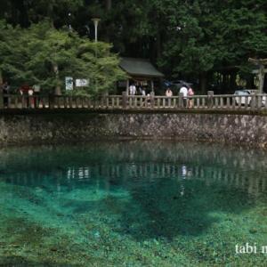 《山口》日本名水百選の別府弁天池湧水