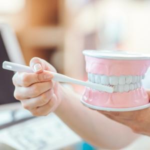 〈まとめ〉歯学部あるある