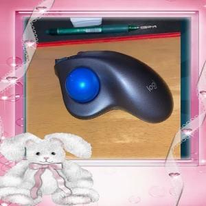 マウス腱鞘炎にいいマウス/ヨーデルオンラインレッスン沖縄