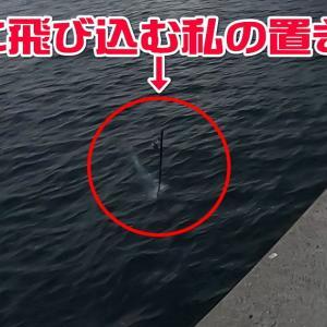 第3回!離島で泊まりで釣り納め。
