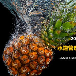 ■水道管理会社TTW2020.2Q決算発表!ディフェンス高配当4.6%タイ株