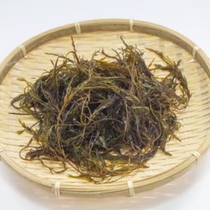 沖縄で潮干狩りが出来る?沖縄の屋我地島で本島と違った貝や海藻を採ろう!