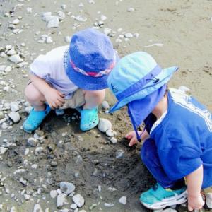 広島県坂町で潮干狩りが出来る?子供たちのおかげ?そのワケも公開