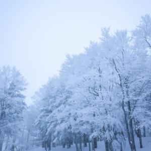 岐阜県内で子供におすすめのスキー場10選❘中学生以下リフト券無料のスキー場も!