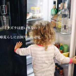子供のイタズラは悪い事なの?冷蔵庫荒らしにお困りの方必見