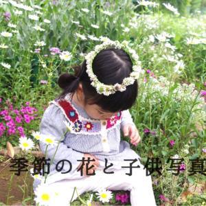 季節の花と子供写真