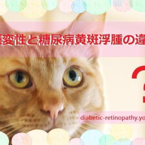 加齢黄斑変性と糖尿病黄斑浮腫の違いって?