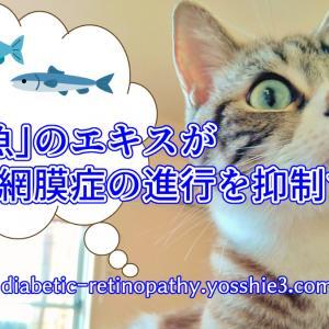 「あの魚」のエキスが糖尿病網膜症の進行を抑制する!