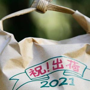 オリジナル米袋を作ってみる(レギュラー30kgサイズと小さい500gサイズ)