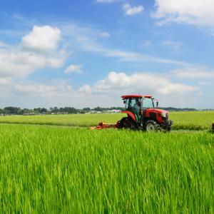 週末の活動(台風が心配)に向け、スライドモアの草刈りは今年度5回目