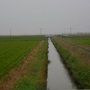 冷たい雨の中、今年最後の草刈りが無事終了!
