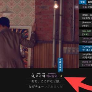 Netflixの韓国語字幕を使って韓国語を勉強しよう~機能編