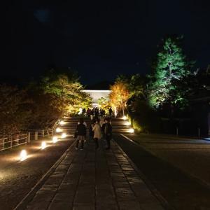 【仁和寺】ライトアップ