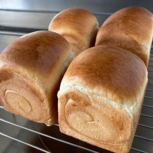 【暑くなってくるとパン焼きも大変(*´Д`)=з】