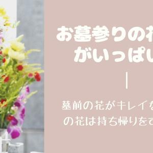 お墓参りの花立てがいっぱい!墓前の花がキレイなとき持参の花は持ち帰りをするべき?