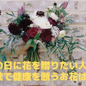 敬老の日に花を贈りたい人必見!花言葉で健康を願うお花はこれ♪