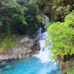ニュージーランド旅行記②〜ミルフォードサウンドは過酷なり〜