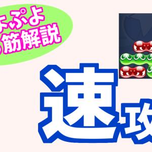 速攻【ぷよぷよ勝ち筋解説】