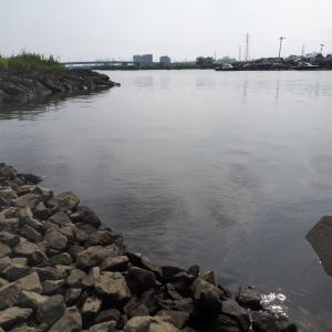 中川水門 ヘラ3 マブ3