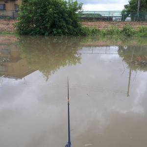 倉松川 増水時限定ポイント  ヘラ1 マブ5