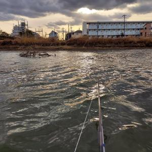 古利根川100分釣り ヘラ1 マブ3