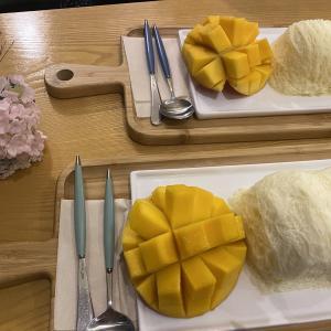 緊急事態宣言後の新大久保で韓国料理を。大好きなサムギョプサルのお店。