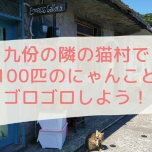 九份の隣の猫村で、100匹のにゃんことゴロゴロしよう!