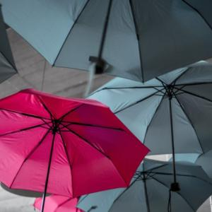 毎日が天気の七変化。オランダでかしこく雨と付きあう方法
