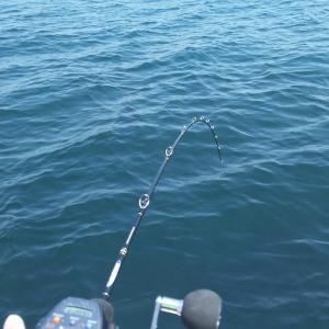 中深海ジギング釣行