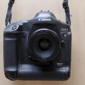 十ン年前のハイエンド EOS-1D Mark2