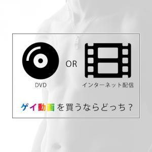 -interval- インターネット動画配信?それともDVD?ゲイ動画を買うならどっち?