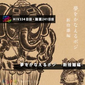 【HIV334日目・服薬241日目】夢をかなえるポジ -断捨離編-