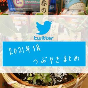 -twitter- 2021年2月のつぶやきまとめ