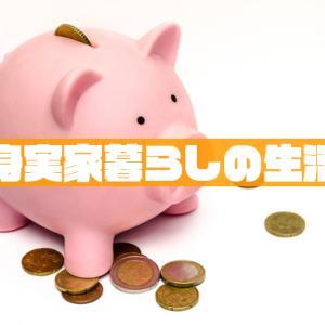 独身実家暮らしの生活費はいくら?アラフォー38歳女性の家計簿