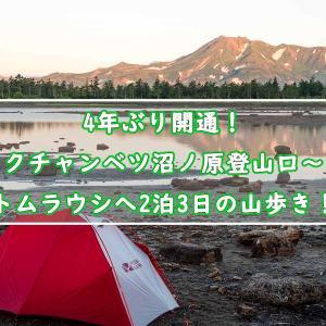 4年ぶりの開通!クチャンベツ沼ノ原登山口~トムラウシへ2泊3日の山歩き!